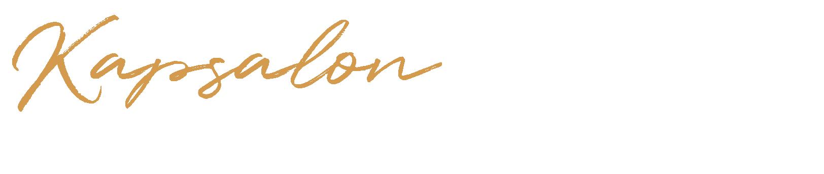 Logo kapsalon de kapper light